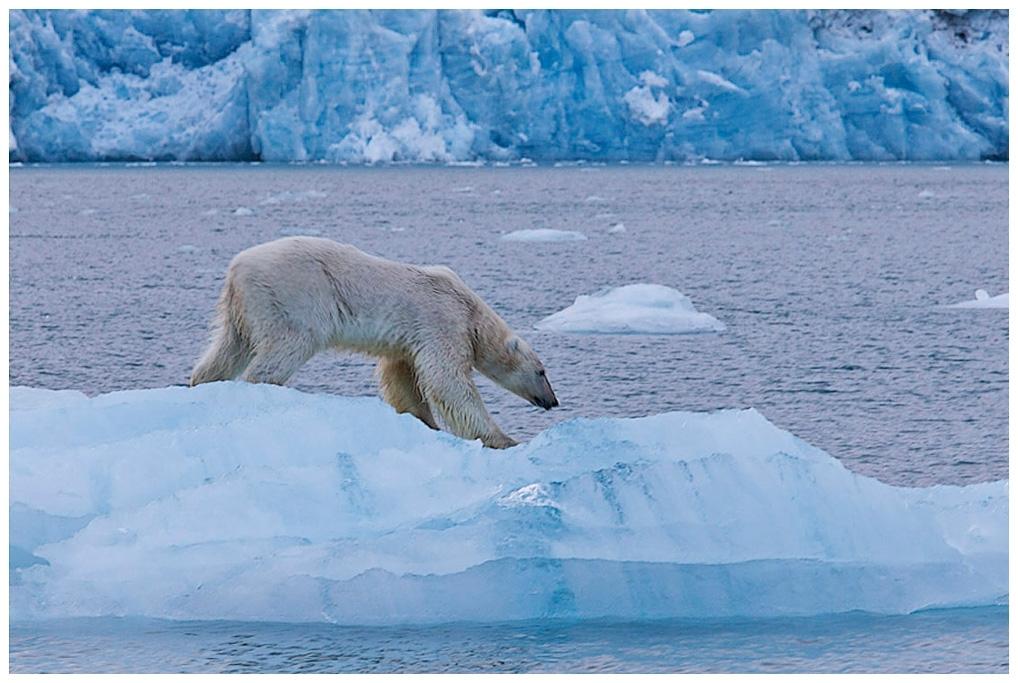 197-Spitzbergen-10