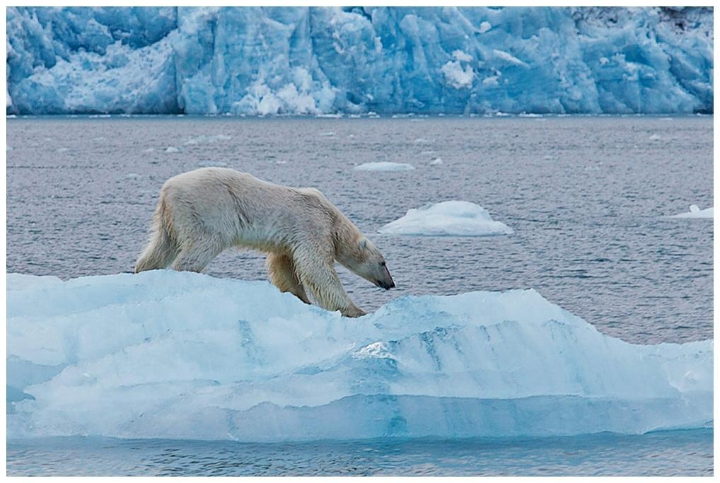 197-Spitzbergen-101
