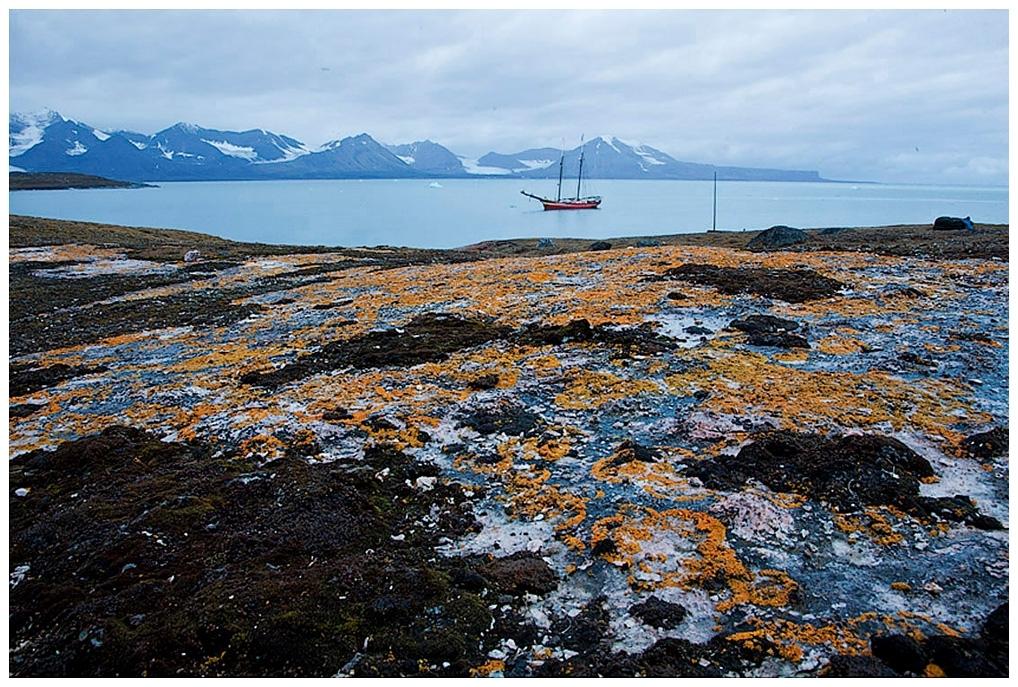 425-Spitzbergen-10