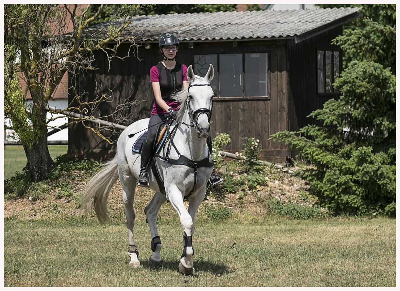 039-Pferd-040617