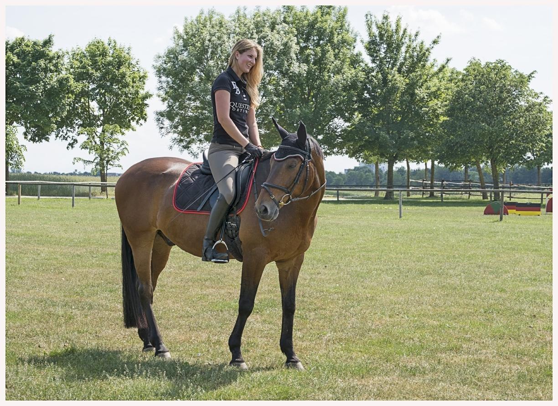 078-Pferd-040617