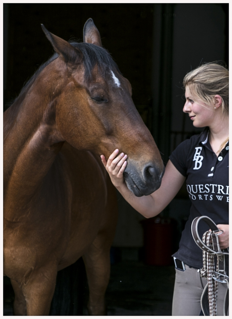 148-Pferd-040617