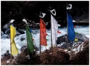 09-Sikkim-18