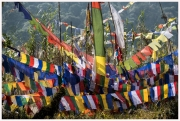 35-Sikkim-18
