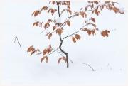 08-Winter-100218