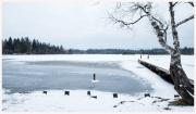 11-Winter-100218
