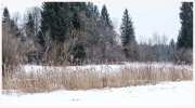 22-Winter-100218