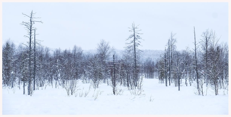 182-x-Finnland-18